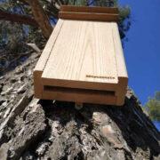 gîte chauves-souris arboricole grand modèle vue dessous