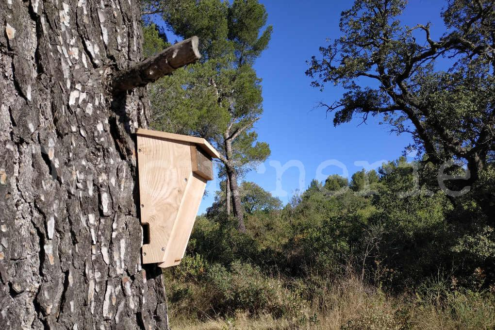 gîte chauves-souris arboricoles grand modèle
