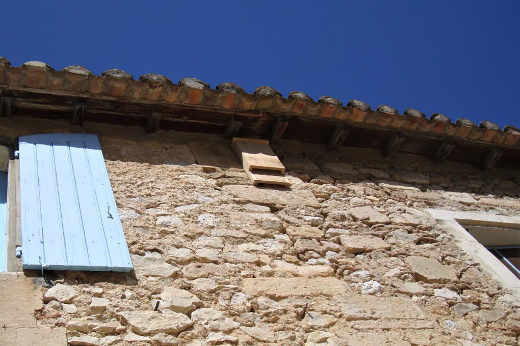 Gîte chauves-souris n°20 facade