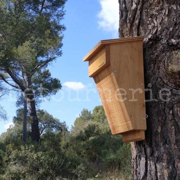 gîte chauves-souris arboricoles