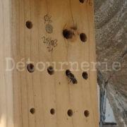 abeille nichoir